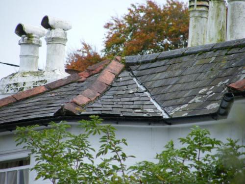 The vendors of this property in Newport didn't fix the roof but.....
