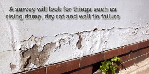 Rising Damp affecting the outside rendering of a property