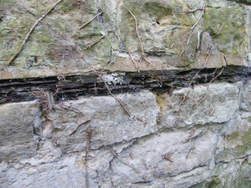 Detail of corroding metal plate in wall